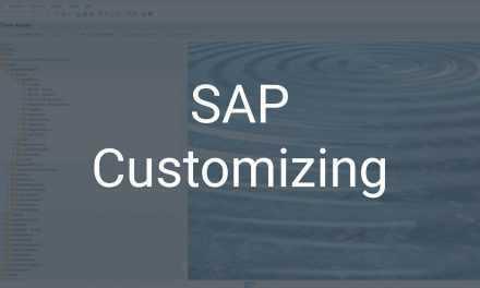 SAP Customizing – SAP individuell auf die Bedürfnisse anpassen