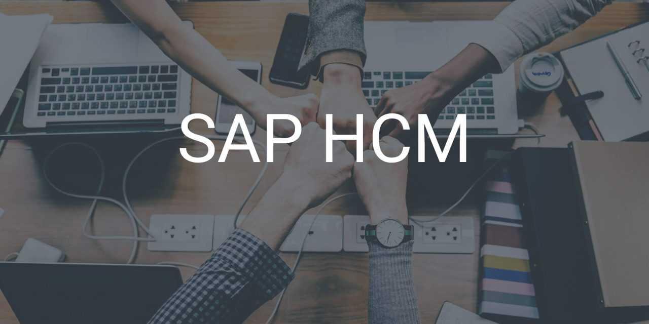 SAP HCM – Personalmanagement einfach gestalten