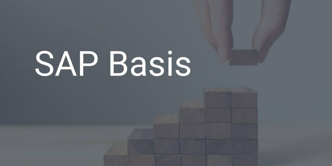 SAP Basis – das sichere Fundament des SAP-Systems