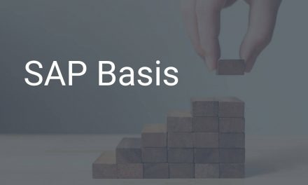 SAP Basis – das sichere Fundament des SAP-Systems