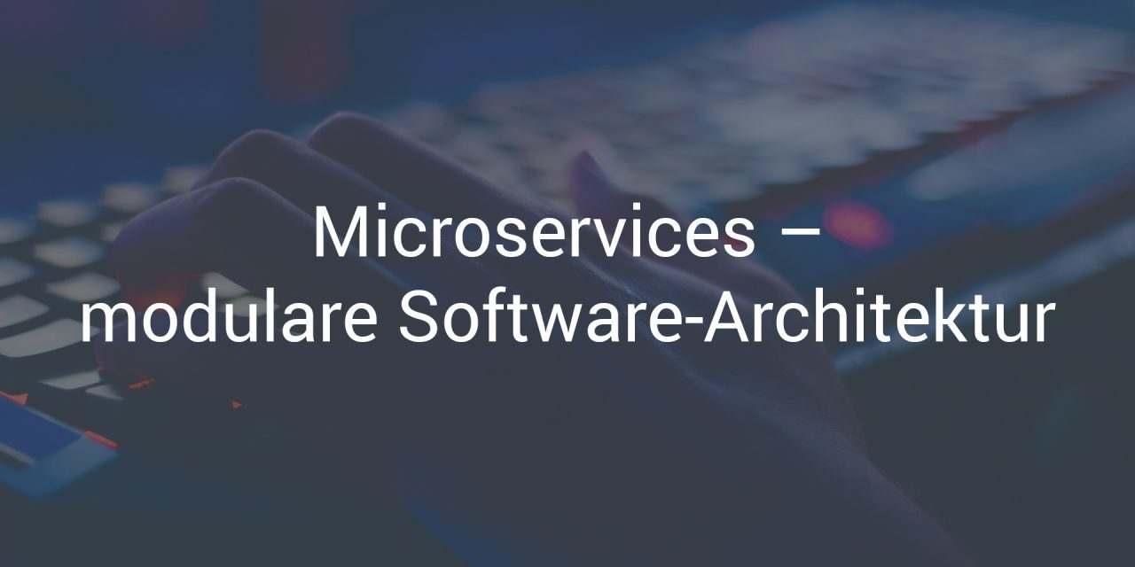 Lohnt sich die modulare Software-Architektur mit Microservices?