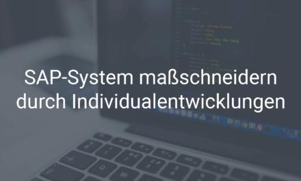 SAP-System maßschneidern durch Individualentwicklungen